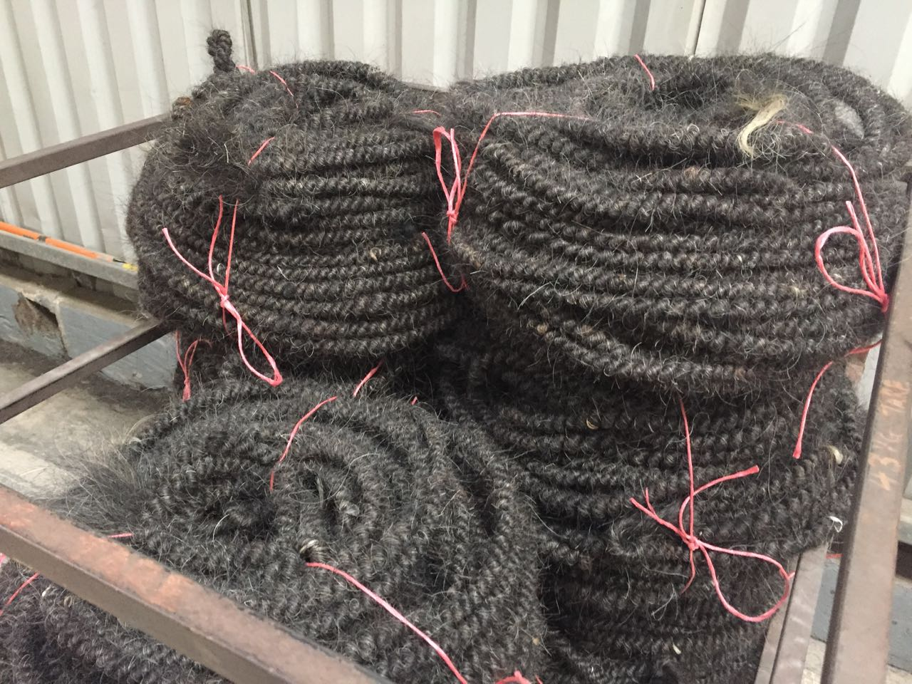 Horsetail is braided and then heated to form a springy rope