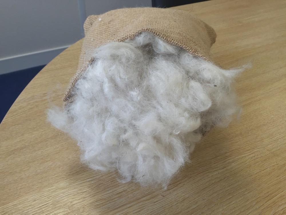 Natural english wool for mattresses