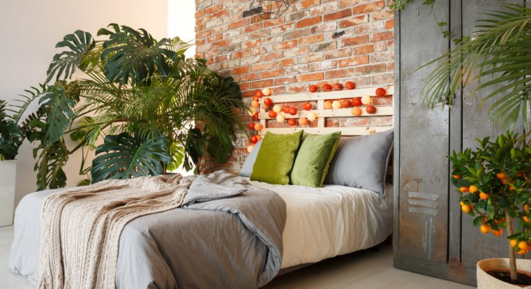 apartment with bed and plant